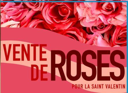 Des roses pour St Valentin