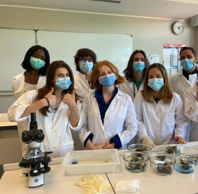 L'étude du système immunitaire humain en classe de S.V.T.