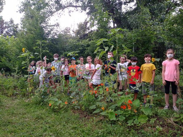 Le projet jardin de la classe de CE2B